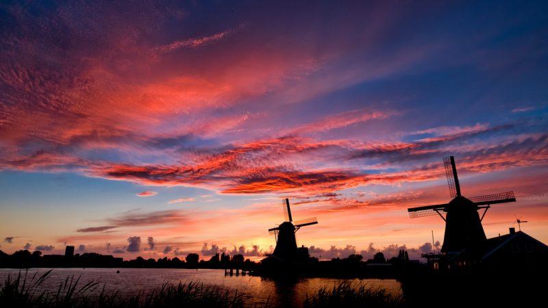 Dlaczego warto pracować sezonowo w Holandii?