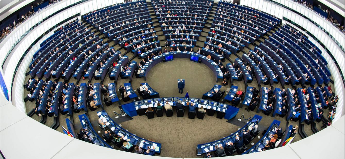 Komisja Petycji Parlamentu Europejskiego jako ciało odwoławcze dla przedsiębiorców